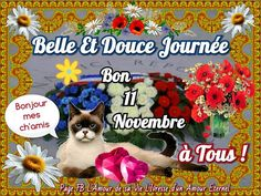 Bouquets, Image, Canada, Facebook, Fall, Welcome November, Bonjour, Days Of Week, Everlasting Love
