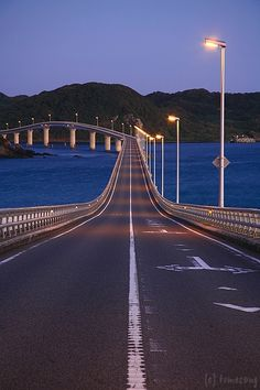 Bridges - Amrit Bhogal