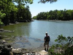 10 Easy Maine Hikes Anyone Can Do