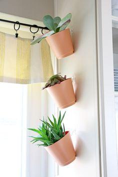 DIY Hanging Kitchen Planters