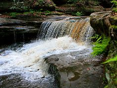 Matthiessen State Park, an Illinois park located nearby La Salle, Ottawa and Peru Peru Illinois, Illinois State Parks, Camping In Illinois, Half Moon Bay Camping, Red River Gorge, Camping Guide, North America, Field Trips, Falling Waters