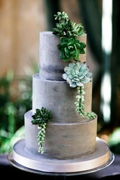 Floral Wedding Cakes green and gray wedding cake with succulents - Succulents are fantastic for wedding decors! With so many varieties and pretty color options, there are endless easy ways to incorporate succulents into your big. Naked Wedding Cake, Big Wedding Cakes, Fondant Wedding Cakes, Floral Wedding Cakes, Amazing Wedding Cakes, Wedding Cake Decorations, Elegant Wedding Cakes, Wedding Cake Designs, Wedding Cupcakes