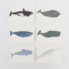 Whales Notecards Set