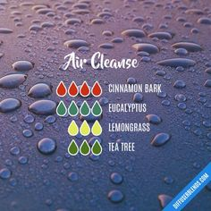 Air Cleanse essential oil diffuser blend My Essential Oils, Essential Oil Diffuser Blends, Melaleuca Essential Oil, Cinnamon Essential Oil, Diffuser Recipes, Doterra Oils, Yl Oils, Room Scents, Eos