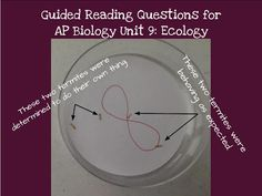 Animal behavior lab for ap biology ecology ethology pinterest biology by the math mom unit 9 reading guides ecology fandeluxe Images