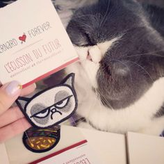 Photo by Dickface - L'écusson du futur de demain - http://www.bernardforever.fr/products/grumpy-cat