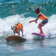 Weekends are more fun with best friends!  Great shot of @haoleboysurfs