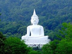 Buddha Statue in Forest Pak Chong the westernmost district in the province of Nakhon Ratchasima in the northeast of Thailand. mywebtravelagent.com