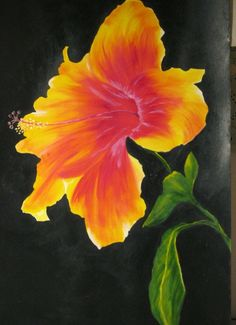 hibiscus paintings on canvas - Google Search