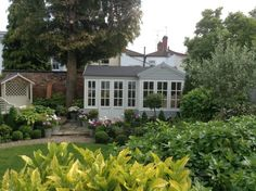 View of Summerhouse from patio in front of Conservatory. Garden Studio, Conservatory, Bliss, Patio, Plants, Winter Garden, Greenhouses, Plant, Green Houses