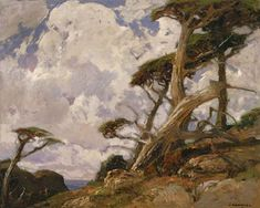 William Rirschel - Windswept Cypress - California Impressionist