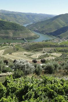 Douro River Valley, the winding, a terraced region that produces the country's beloved port wine. This is Portugal's answer to Germany's romantic Rhine River Places In Portugal, Portugal Travel, Douro Portugal, Places To Travel, Places To Visit, Valley Landscape, Big Sur California, Portuguese Culture, Douro Valley