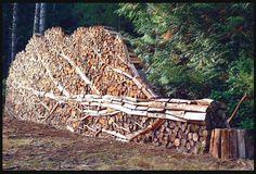 houtopslag...op de rand met het bos een sculptuur maken.