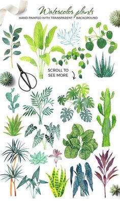 Scandi house plants interior creator by beauty drops on Creative Market Scandi . Scandi house plants interior creator by beauty drops on Creative Market Scandi House Plant Interior Creator von Plant Painting, Plant Drawing, Diy Painting, Drawing Art, Home Tattoo, Tattoo House, Small Succulents, Succulents Garden, Succulent Pots