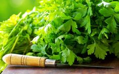 Parsley Health Benefits - Growing Your Own Medicine