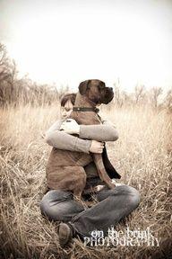 lapdog boxer  8b07cfdbea3783bd2ca49964b73221d0.jpg 192×288 pixels