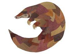Angry Pangolin by Jonathan Woodward | abstract Pangolin art