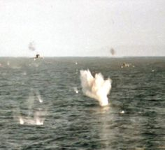 Bravery: The snapper, who has never been named, somehow survived the Falklands War attack by two A4 Skyhawks on May 25, 1982