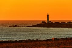 Pigeon Point Lighthouse _DSC0040