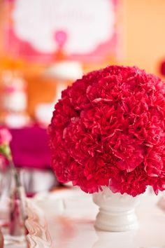 Preciosas flores color fucsia / Lovely fucsia flowers