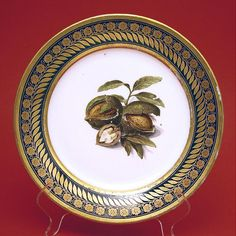 19th C DARTE Paris French Porcelain Botanical Cabinet Plate Cobalt with Nuts