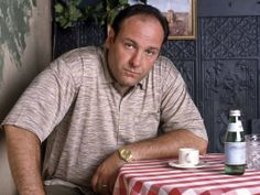 In the wake of James 'Tony Soprano' Gandolfini's death, we look back at some of his best quotes from hit HBO series The Sopranos.