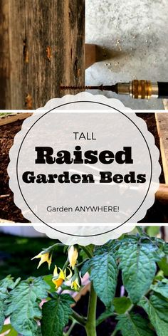 Raised bed gardens - these are brilliant! Now I can garden anywhere! And these will save my back - gardening with no aching back? Yes, please... Gardening | raised bed gardening | Grow your own food |