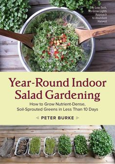 The Low-Tech, No-Grow-Lights Approach to Abundant Harvest Year-Round Indoor Salad Gardening offers good news: with nothing more than a cupboard and a windowsill, you can grow all the fresh salad green