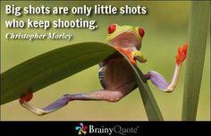 Big shots are only l  Big shots are only little shots who keep shooting. - Christopher Morley  https://www.pinterest.com/pin/445082375654643215/   Also check out: http://kombuchaguru.com