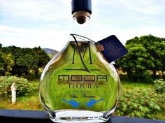 Moda Tequila Silver from the backyard
