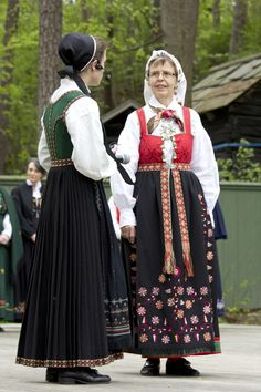 Kvinnebunad fra Åmli i Aust-Agder. Folk Costume, Costumes, Historical Clothing, Norway, Scandinavian, American, Outfits, Clothes, Dresses