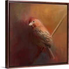 •Look closely, and you'll see him, waiting quietly in the May evening light.• Product Description: Male House Finch Bird art by Jai Johnson on canvas in floater frame