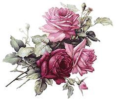 Vintage roses                                                                                                                                                                                 More
