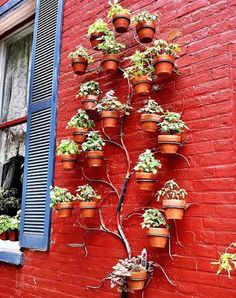 vertical garden  Vertical gardens are a fantastic, artistic and intelligent way to grow your favorite herbs, veggies and flowers in small spaces or urban scapes. Check out our 6 favorite ideas for verdant vertical gardens to inspire a late spring project in your courtyard, alleyway, backyard or even indoors!