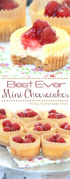 20 Mini Cheesecake Recipes A Perfect Party Dessert is part of Mini dessert Bars - A miniature size, but an incredible amount of flavor! These 20 mini cheesecake recipes are sure to satisfy your guests Go ahead! Mini Desserts, Mini Cheesecake Recipes, Brownie Desserts, Delicious Desserts, Yummy Food, Elegant Desserts, Mini Cheesecake Cupcakes, Finger Food Desserts, Potluck Desserts