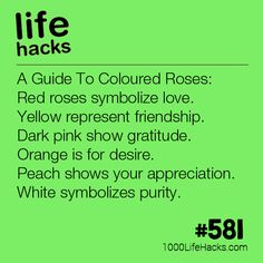 A Guide To Coloured Roses