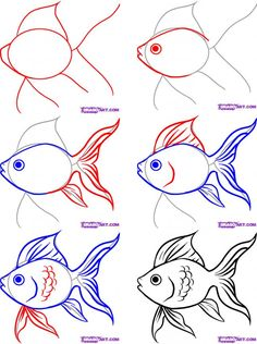 Image Detail for - Posted in How to Draw Easy Fish , How to Draw Salt Water Fish | 2 .