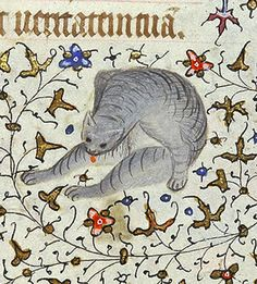 """Medieval cat grooming itself (@MorganLibrary, MS M. 1004, 15th c.)"""
