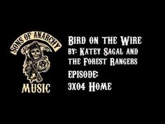 Bird On The Wire - Katey Sagal & The Forest Rangers
