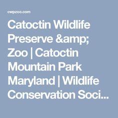 Catoctin Wildlife Preserve & Zoo | Catoctin Mountain Park Maryland | Wildlife Conservation Society