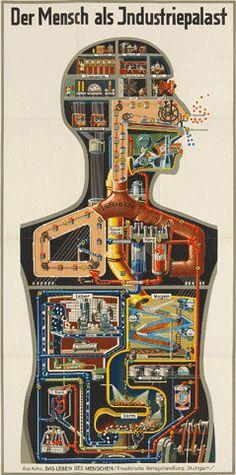 Fritz Kahn Halle (Saale) 1888 - 1968 Locarno  Der Mensch als Industriepalast  Farb. Lithographie. 1926. 93,5 : 46,3 cm (95,0 : 47,5 cm).