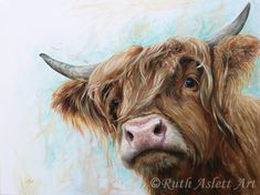 Angus by Ruth Aslett Highland Cow Painting, Highland Cow Art, Scottish Highland Cow, Highland Cattle, Farm Animals, Cute Animals, Cow Drawing, Fluffy Cows, Farm Art