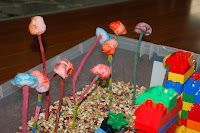 DIY Truffula Trees - dyed cotton balls and painted sticks