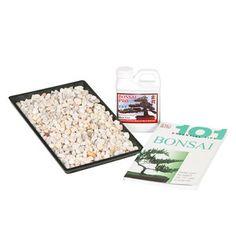 Bonsai Starter Kit Medium, $26, now featured on Fab.