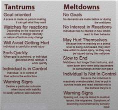 tantrums vs meltdowns
