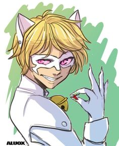 Image result for miraculous ladybug chat blanc