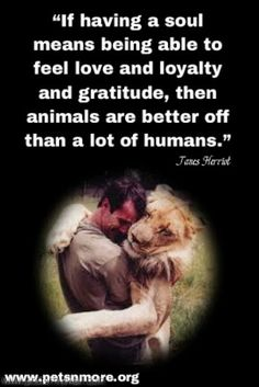 """Love the quote-  The author, James Herriot was a British veterinary surgeon and writer.  He is the author of """"All Creatures Great and Small"""".  If you ever get a chance, read it.. Awesome book."""