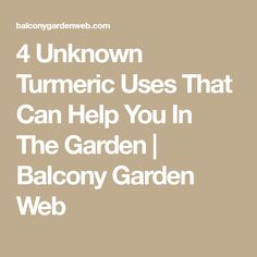 4 Unknown Turmeric Uses That Can Help You In The Garden   Balcony Garden Web