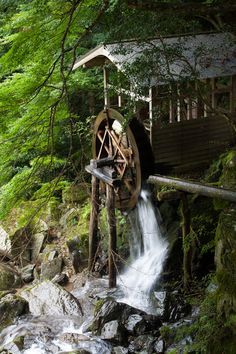 Water wheel in Japan Beautiful World, Beautiful Places, Old Grist Mill, Water Powers, Water Mill, Water Water, Old Barns, Le Moulin, Covered Bridges