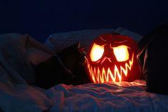 Pumpkin Carving Ideas for Halloween Still More Awesome Pumpkin Designs for 2013 Halloween Items, Halloween 2015, Halloween Horror, Holidays Halloween, Scary Halloween, Vintage Halloween, Halloween Pumpkins, Halloween Crafts, Happy Halloween